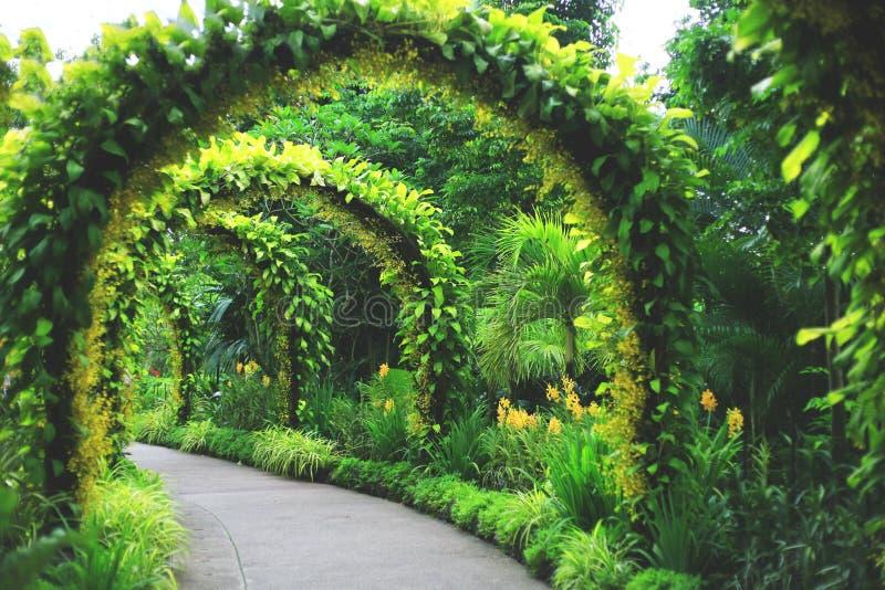 Gränsmärke för musikbandställning på den Singapore botaniska trädgården royaltyfri foto