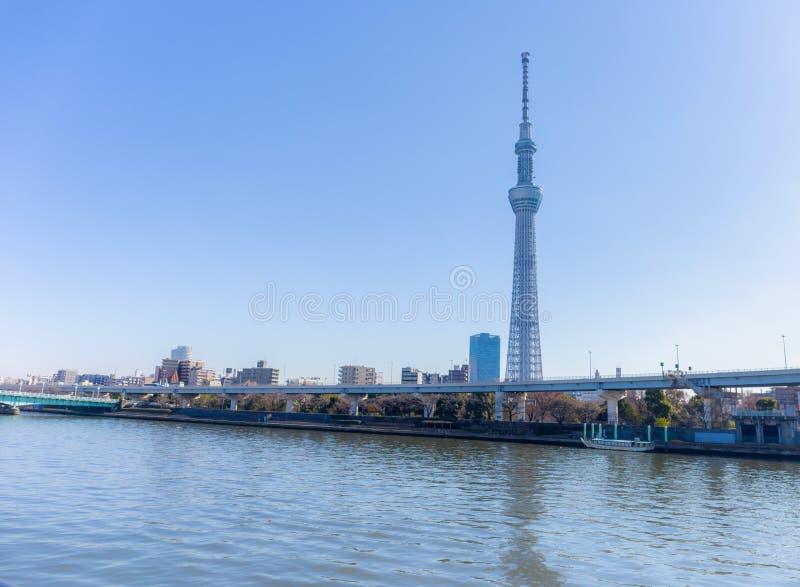 Gränsmärken för byggnad för sikt för stad för Toyko himmelträd av Japan arkivfoton