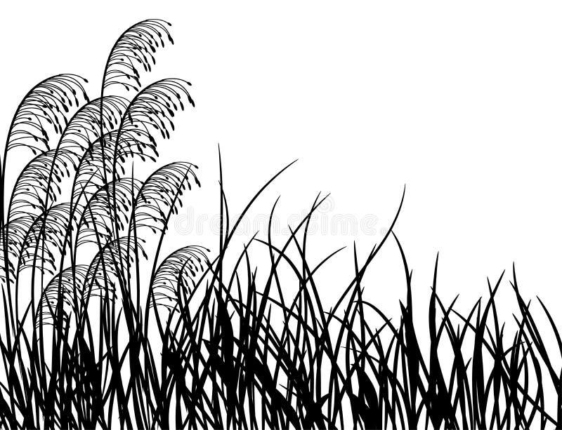 gräsängvektor stock illustrationer