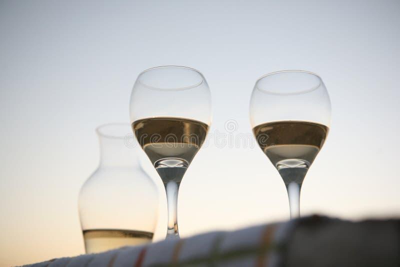 Gräs av vin royaltyfria foton