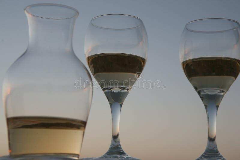 Gräs av vin arkivbild