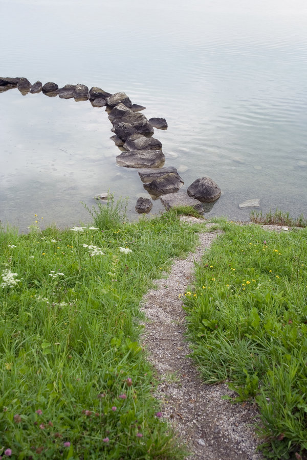 gräs banastenvatten royaltyfri foto