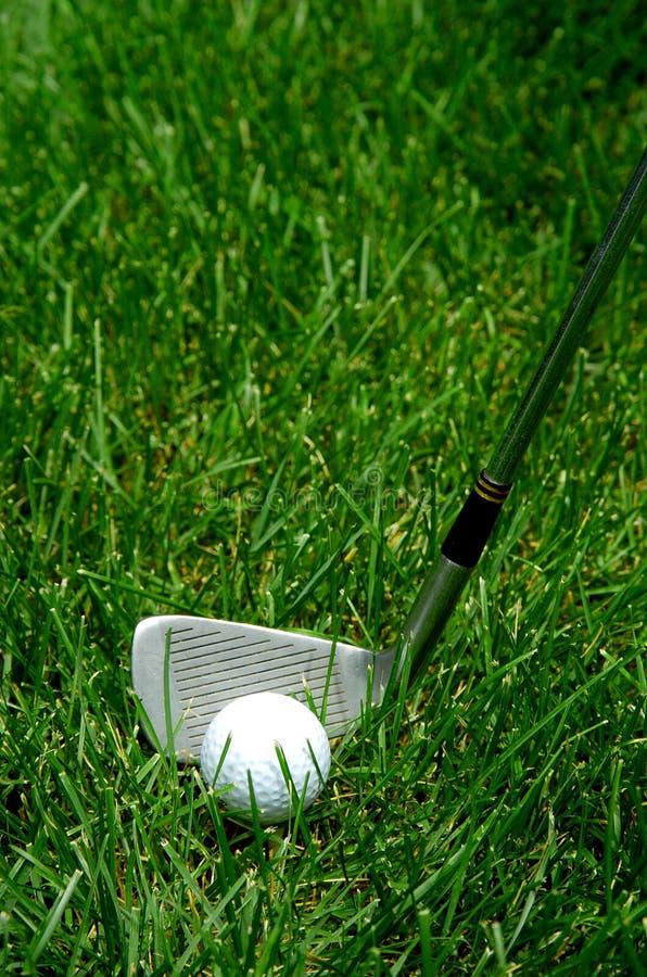 gräs för bollklubbagolf arkivfoto