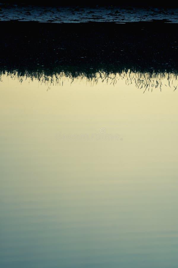 Gräs för kanalsolreflexion royaltyfri bild