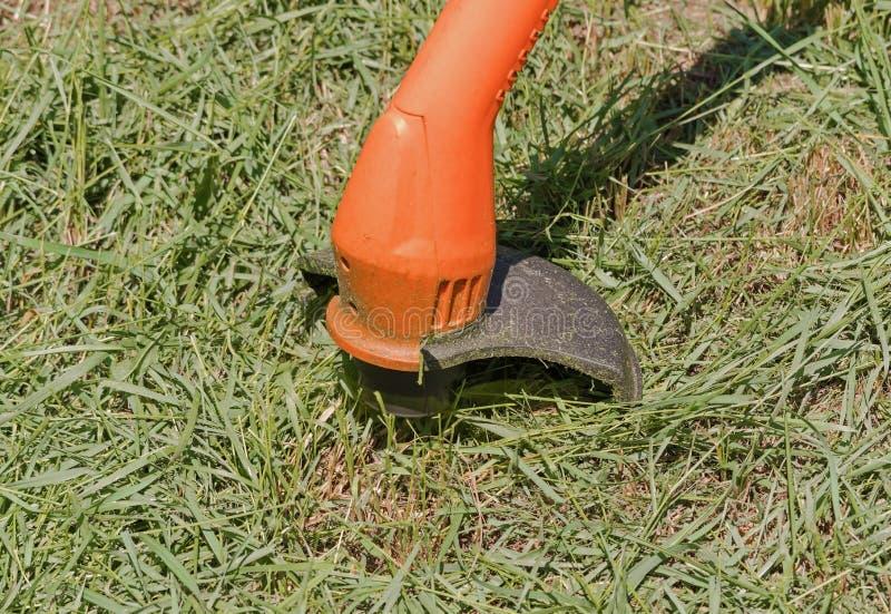 Gräs för klipp för gräsklippningsmaskin för radgräsmattabeskärare, över en gräsbakgrund fotografering för bildbyråer