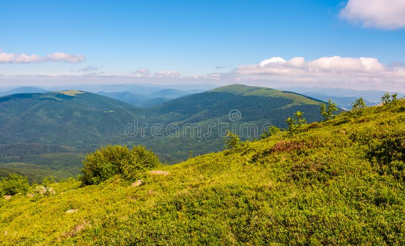 Gräs- hal lutning av bergkanten royaltyfri bild