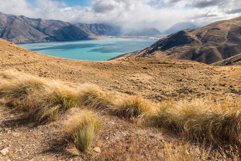 Gräs- kullar ovanför sjön Ohau i den södra ön, Nya Zeeland arkivfoton