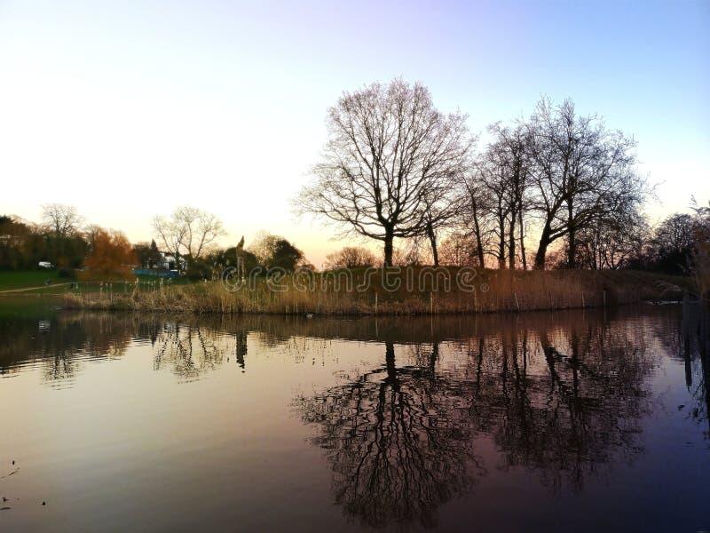Gräs natur i parkerar i London fotografering för bildbyråer