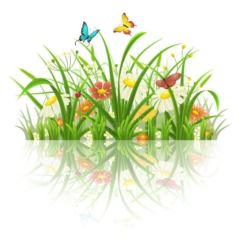 Gräs och blommor för vår grönt stock illustrationer