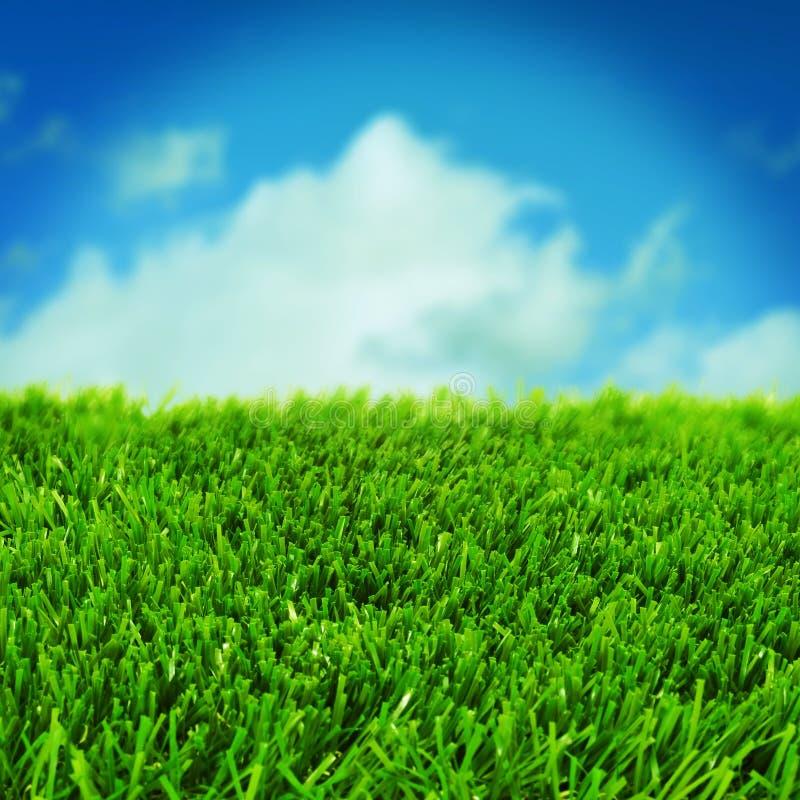 Download Gräs och himlen fotografering för bildbyråer. Bild av fotboll - 37348497