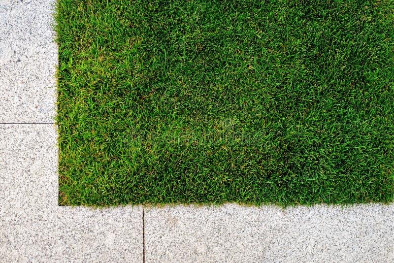 Gräs- och stentrottoar royaltyfri fotografi