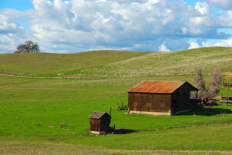 gräs- rund kulle för ladugård royaltyfri fotografi