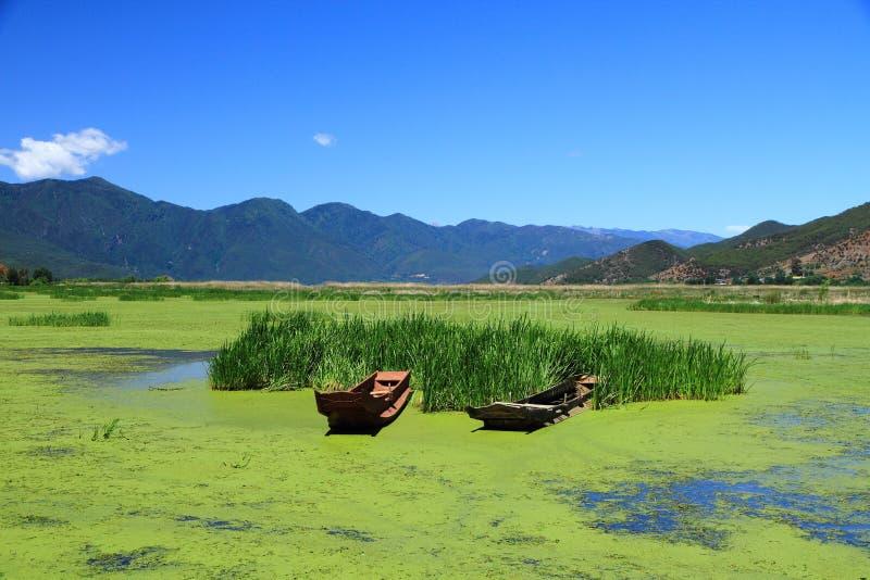 Gräs sjö i Lugu sjön, Kina arkivbilder