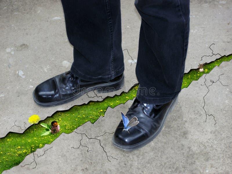 Gräs till och med en spricka i asfalten arkivfoton