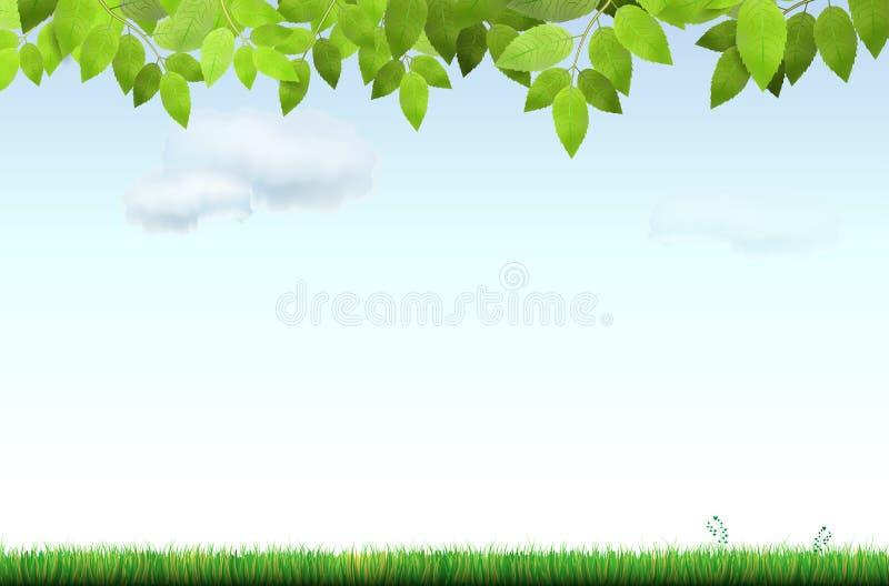 Gräs, trädfilial och himmel med moln stock illustrationer