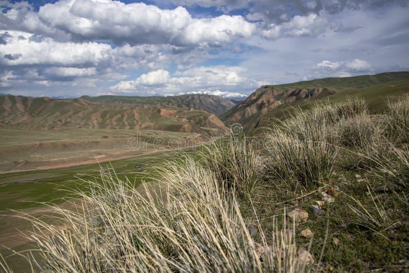 Gräsbakgrund av gröna kullar och bergmaxima med en molnig himmel Resor kyrgyzstan royaltyfri fotografi