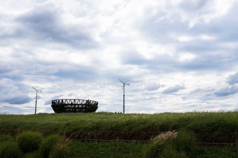 Gräsfältet och vind i haneul parkerar fotografering för bildbyråer