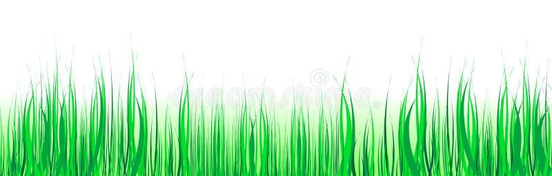 gräsgreen vektor illustrationer