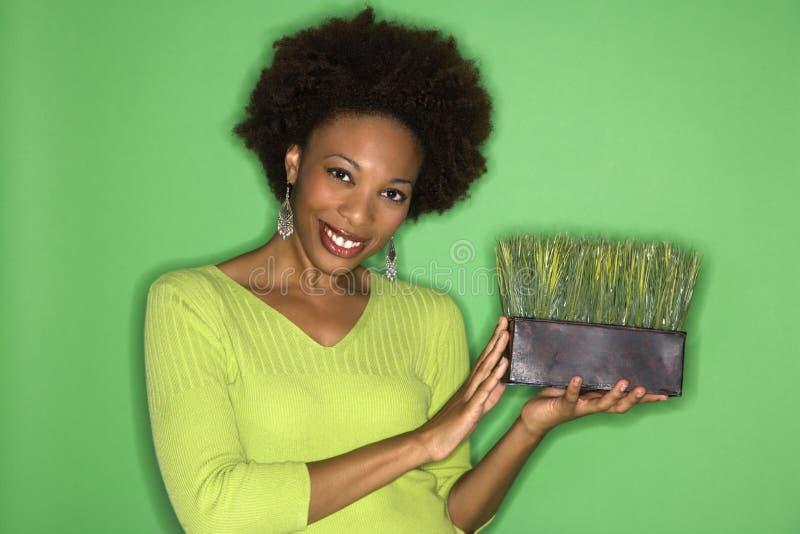 gräsholdingkvinna arkivfoton