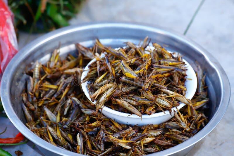 Gräshoppor som är till salu i en marknad av en by i sydliga Yunnan, Kina Yunnan Kina royaltyfria foton