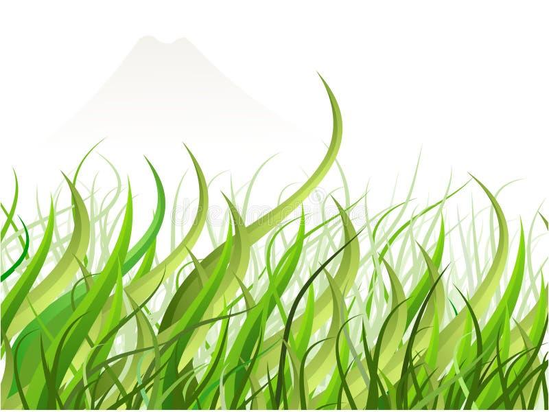 gräsjapan sikt vektor illustrationer