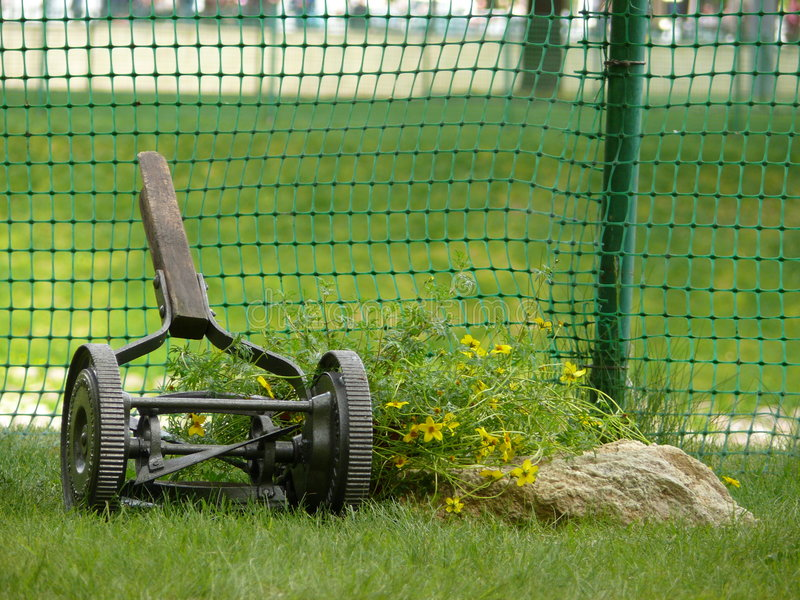 gräsklippare arkivfoton