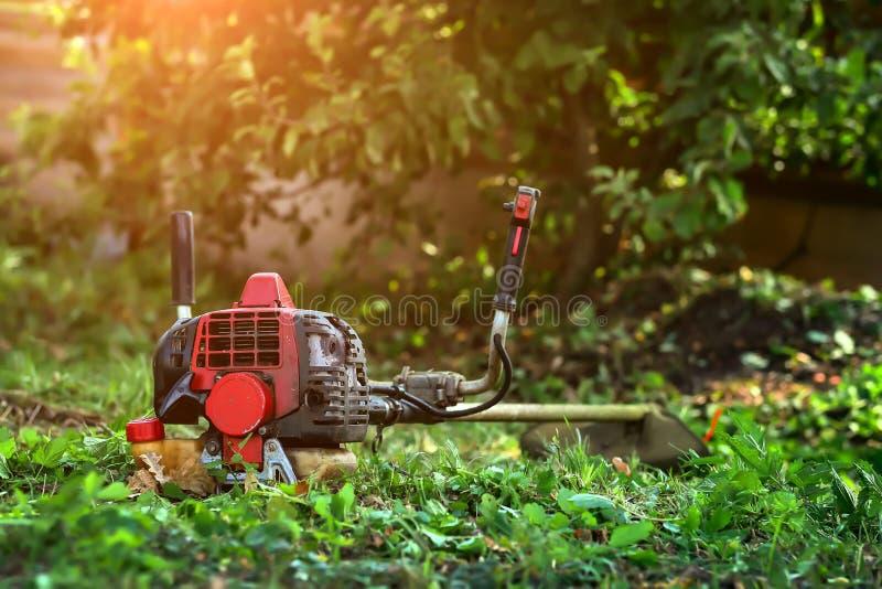 Gräsklippare som ligger på gräset royaltyfri foto