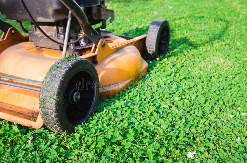 Gräsklippningsmaskin för orange gräs för bensin för gammal stil fotografering för bildbyråer
