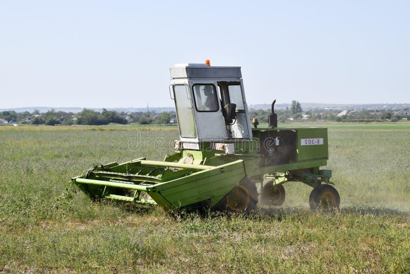 Gräsklippningsmaskinen i fältet mejar gräset för hö royaltyfria bilder