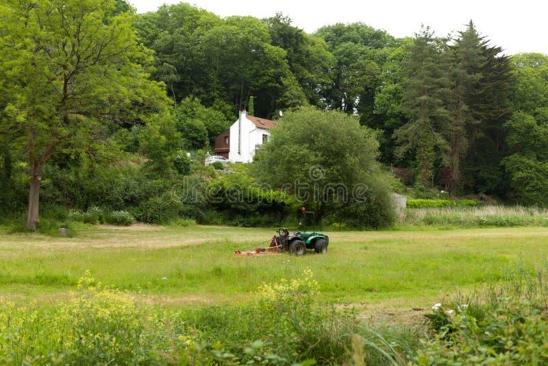 Gräsklippningsmaskinen som klipper gräset parkerar offentligt Botaniska trädgården Le Vallon du stack Alar, Brest, Frankrike kan  royaltyfria foton