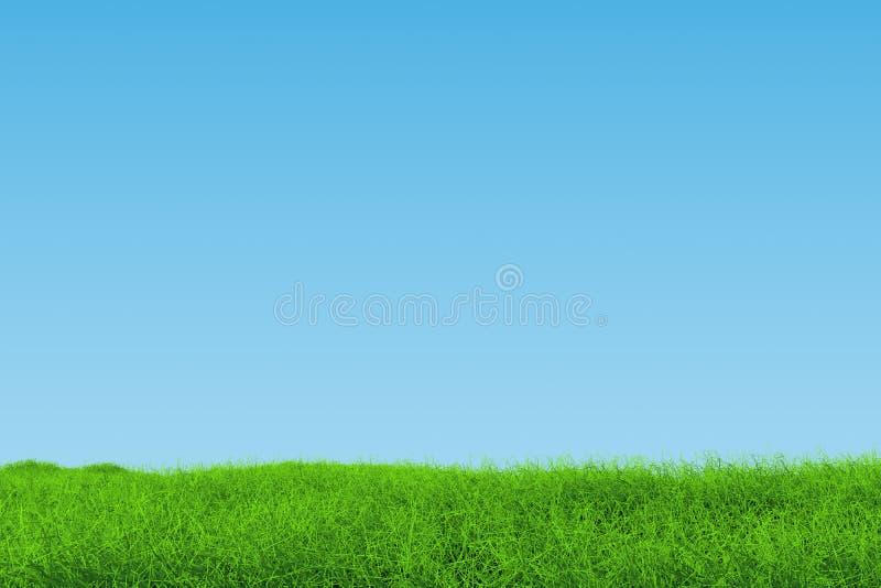 Gräslandskap fotografering för bildbyråer