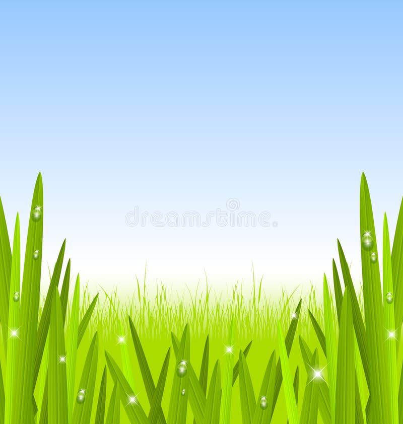 gräsmorgon vektor illustrationer