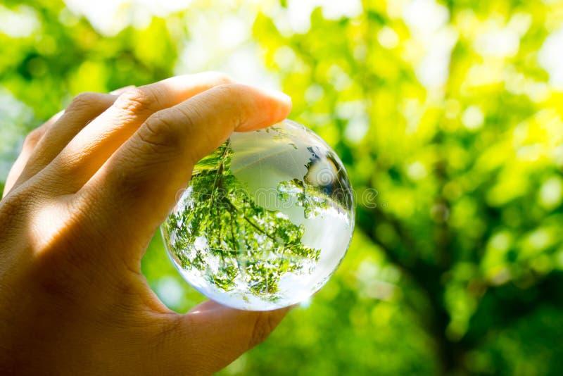 Gräsplan- & Eco miljö, glass jordklot i trädgården royaltyfria bilder
