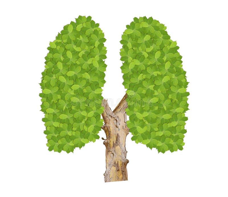 Gräsplan lämnar lungor som symbol av ekologirengöringen miljö- vektor illustrationer