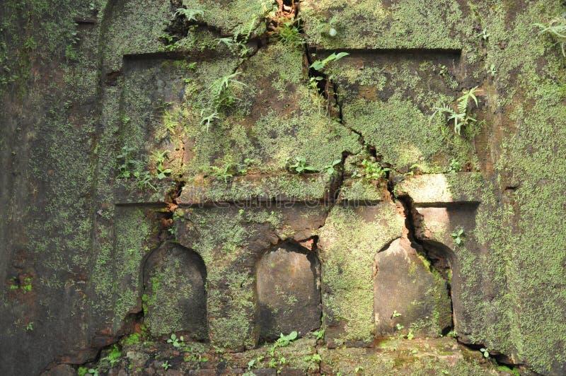 Gräsplan på att gå ned arvet arkivbild