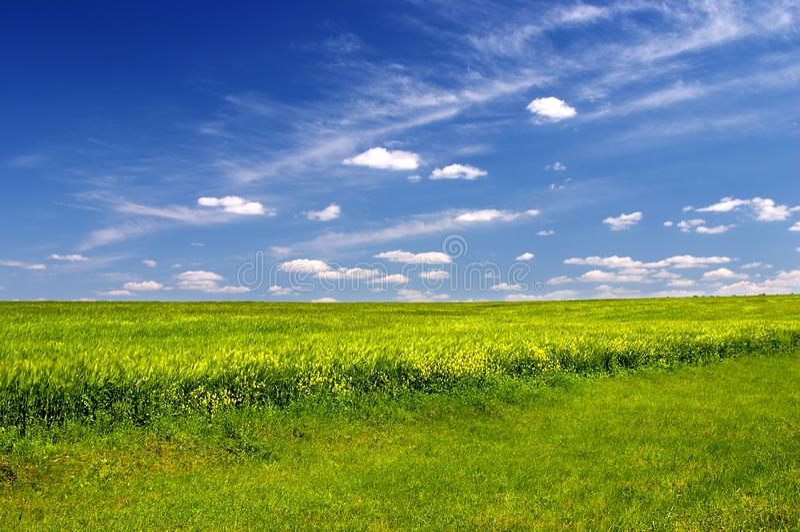 Gräsplan sätter in fotografering för bildbyråer