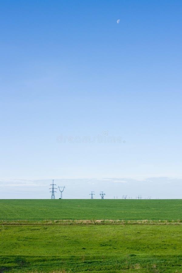 Gräsplan sätter in och slösar skyen royaltyfri foto