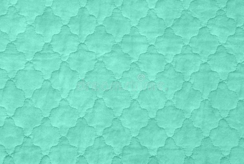 Gräsplan texturerar bakgrund, närbild av täcket för havsgräsplan, aquamari royaltyfria foton