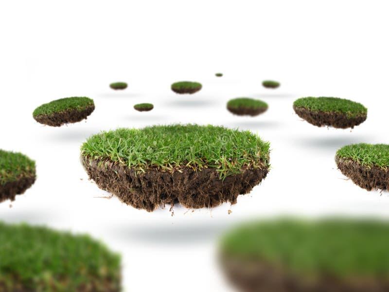 gräsplanet arkivbild