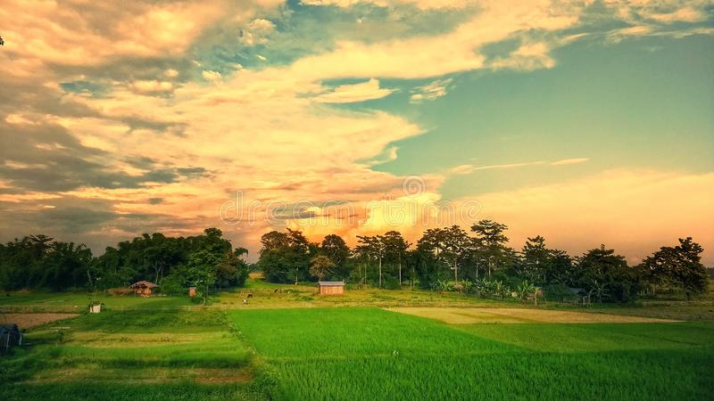 Gräsplanfält hälsar aftonhimlen arkivbilder
