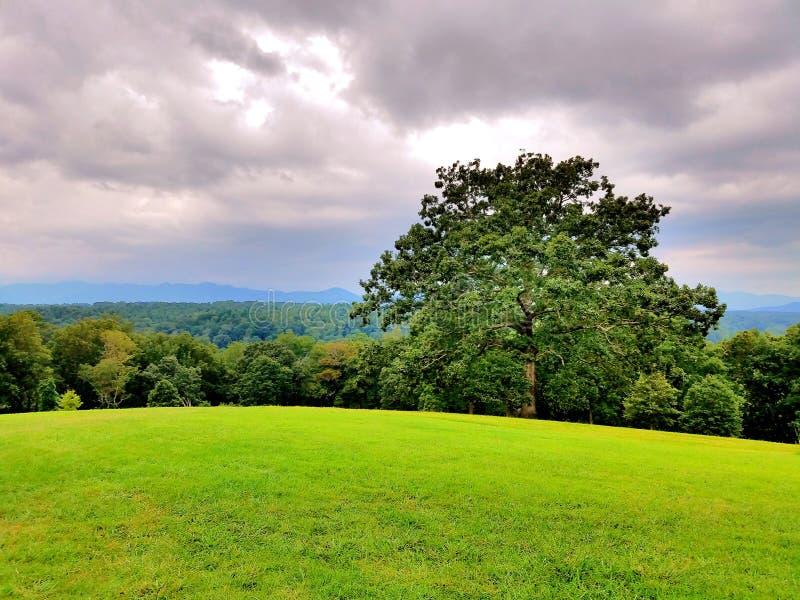 Gräsplanfält mot berg royaltyfria bilder