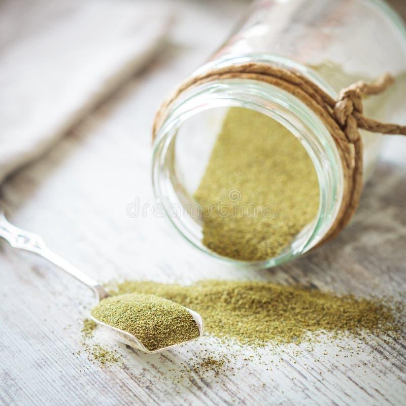 Gräsplanpulver för brunalg (alger) royaltyfria bilder