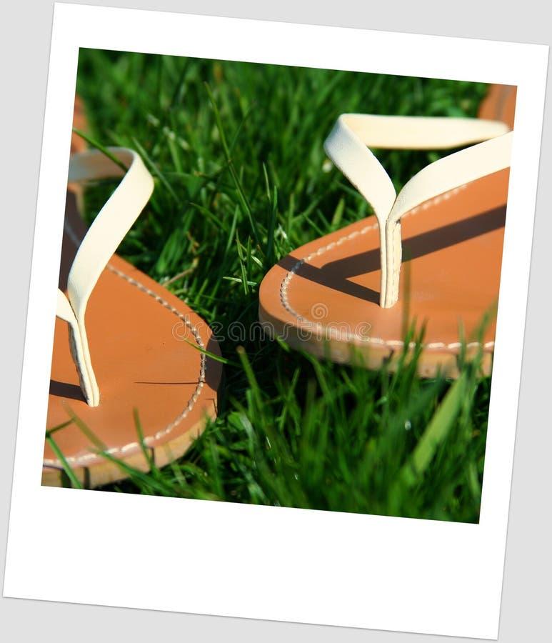 grässandals arkivbilder