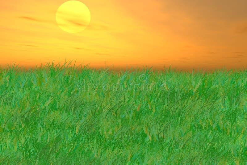 grässlättar över soluppgångvåg fotografering för bildbyråer