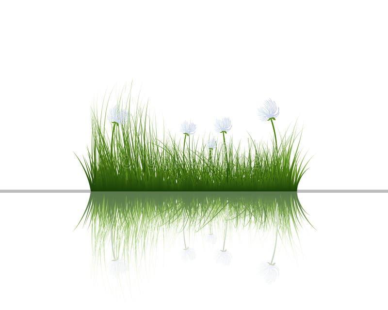 gräsvatten stock illustrationer
