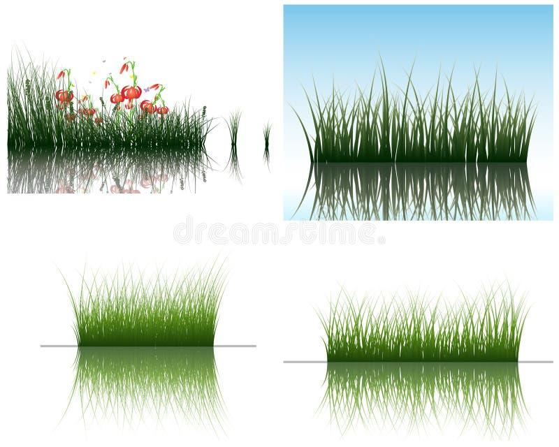 gräsvatten royaltyfri illustrationer
