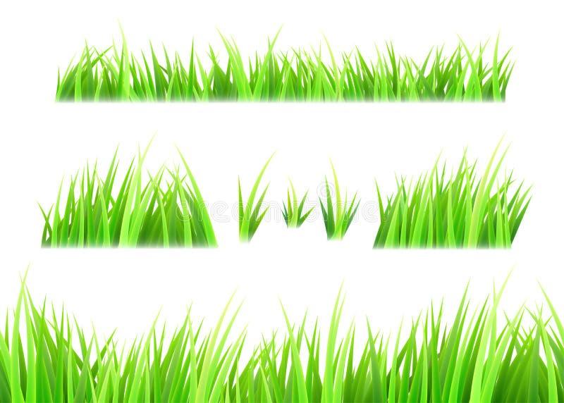 Gräsvektor som isoleras på vit bakgrund Tofsar av gräs Grön sommargräsmattauppsättning royaltyfri illustrationer