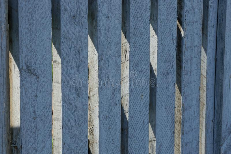 Grå blå wood textur av det tunna staketet stiger ombord royaltyfri fotografi