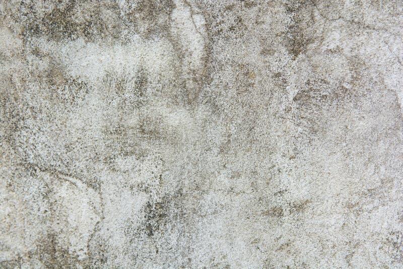 Grå färgbetongvägg, grått konkret golv, smutsig grå textur och bakgrund för cementgolvspricka arkivfoto