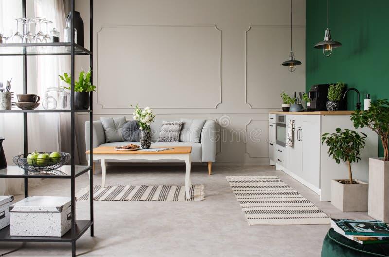 Grå färger och grönt öppet plankök och vardagsrum, verkligt foto med kopieringsutrymme på den tomma väggen royaltyfria foton